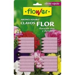 ABONO CLAVOS PLANTA C/FLOR (30 UD) - Imagen 1